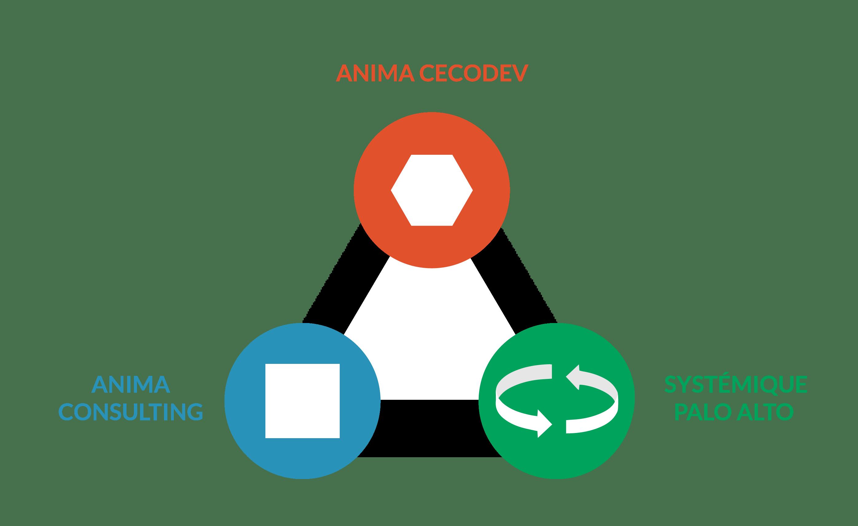 Schéma des 3 métiers interconnectés